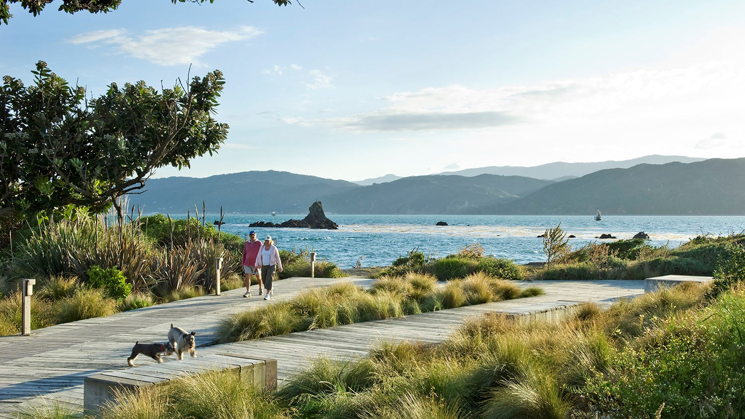 Waterfront Seatoun 1.jpg